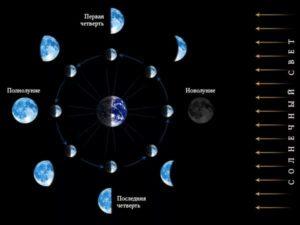 Солнечно-лунный цикл