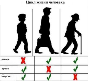 Возрастные циклы человека